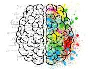 brain-2062057_640 (1)